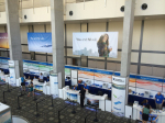 /ext/galleries/niweek-2014/full/267.jpg