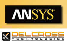 ANSYS-Delcross