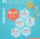 Horizon 2020 SMEs